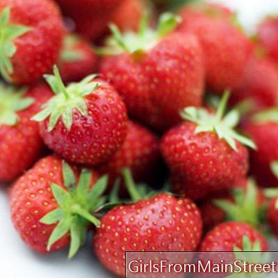 Comer crudo: postres frutales!