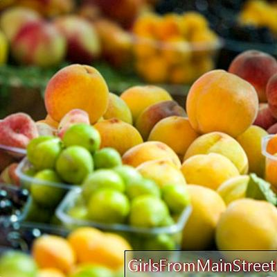 Gargantas de frutas de verano