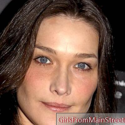 Carla Bruni would work on a new album