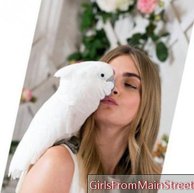 Cara Delevingne takes tea with a pony and cockatoos for Mulberry