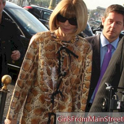 Objective Fashion Week: meet Anna Wintour user manual