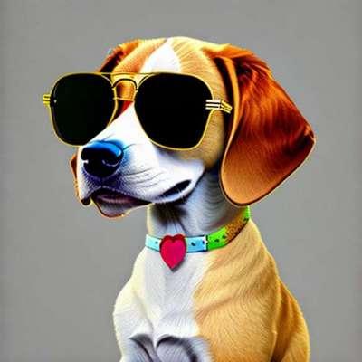 LOL objekt av måneden: Paris Hilton briller