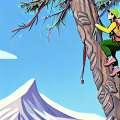 Olahraga di hutan